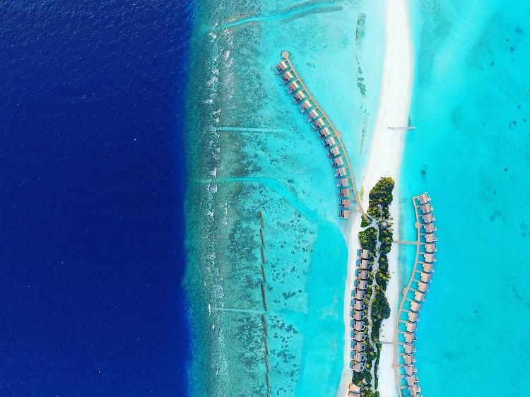 maldives - camille